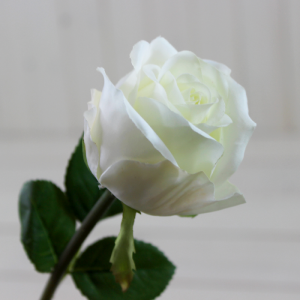 Classic White Rose Stem - Faux/Fake Flowers by Lily & Moor Home Decor