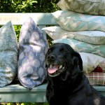 Lily & Moor feather filled patterned cushions!