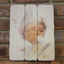 Red Squirrel Plaque