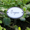 Oregano Herb Sign