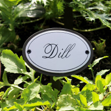 Dill Herb Sign