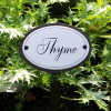 Thyme Herb Sign