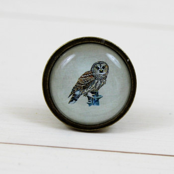 Glass Owl Knob