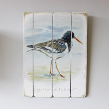 Oyster Catcher Plaque